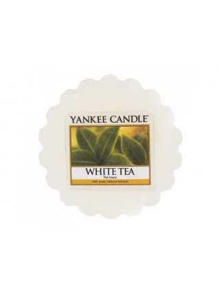 Yankee Candle vonný vosk do aromalampy White Tea