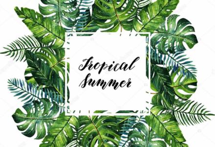 Tropické léto si žádá tropické motivy